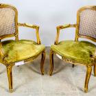 Antiikne paar käetugedega toole